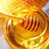 Целебные свойства меда – известные истины