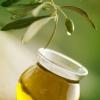 Оливковое масло: польза и вред при употреблении