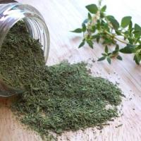Чабрец: лечебные свойства и противопоказания для использования растения