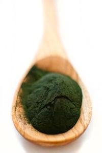 Спирулина: полезные свойства и противопоказания водоросли