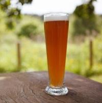 Можно ли безалкогольное пиво беременным – искушение велико