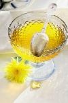 Варенье из одуванчиков: лекарственный мёд